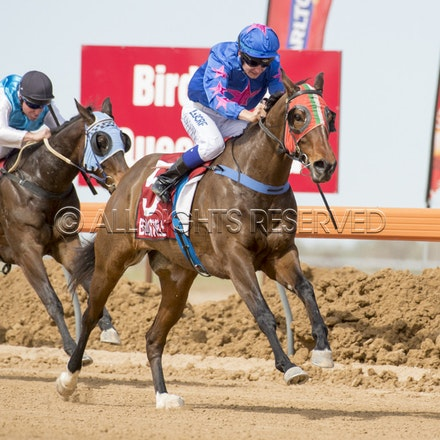 Race 1, Nordic Red, Clayton Gallagher_04-09-16, Birdsville, WIN_561