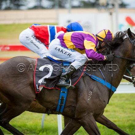 Race 1, Millmount, Troy Baker_03-02-17, Hobart, Sharon Lee Chapman_0385