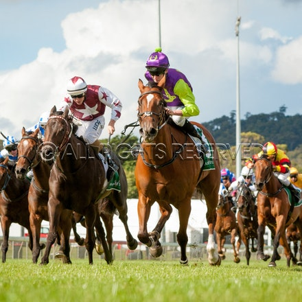 Launceston - Oaks Day - 19 February 2017