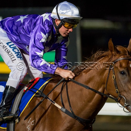 Race 4, Jubilance, Jason Maskiell_14-02-18, Launceston, Sharon Lee Chapman_0485