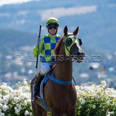 Race 1, Treeconi, Troy Baker_09-02-18, Hobart, Sharon Lee Chapman_0015