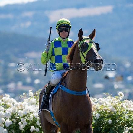 Race 1, Treeconi, Troy Baker_09-02-18, Hobart, Sharon Lee Chapman_0016