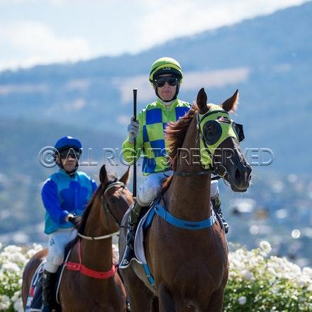 Race 1, Treeconi, Troy Baker_09-02-18, Hobart, Sharon Lee Chapman_0017