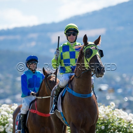 Race 1, Treeconi, Troy Baker_09-02-18, Hobart, Sharon Lee Chapman_0018