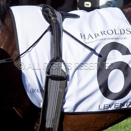 Race 7, Levendi_07-04-18, Royal Randwick, Sharon Lee Chapman_0003