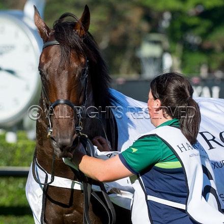 Race 7, Levendi_07-04-18, Royal Randwick, Sharon Lee Chapman_0080