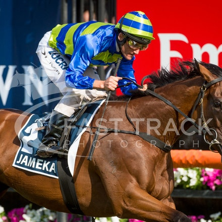 Flemington - Oaks Day 5 November 2015