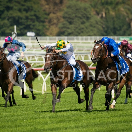 Race 1, Astern, James McDonald & El Divino, Blake Shinn_02-04-16, Royal Randwick, WIN_0004