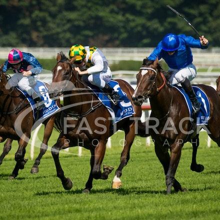 Race 1, Astern, James McDonald & El Divino, Blake Shinn_02-04-16, Royal Randwick, WIN_0006