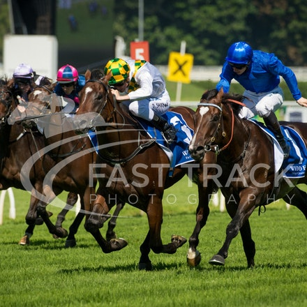 Race 1, Astern, James McDonald & El Divino, Blake Shinn_02-04-16, Royal Randwick, WIN_0009