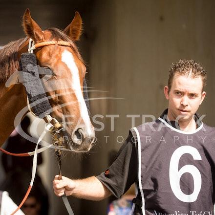 Race 1, Bring Me The Bling_09-04-16, Royal Randwick_0014
