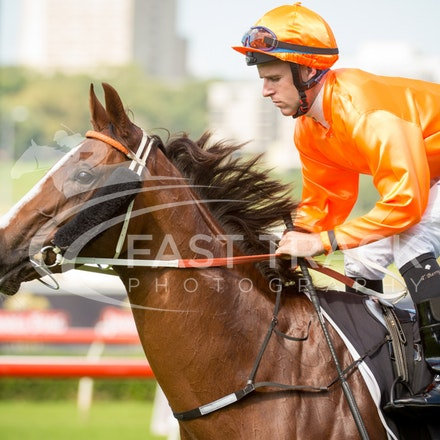 Race 1, Bring Me The Bling, Tommy Berry_09-04-16, Royal Randwick_0037