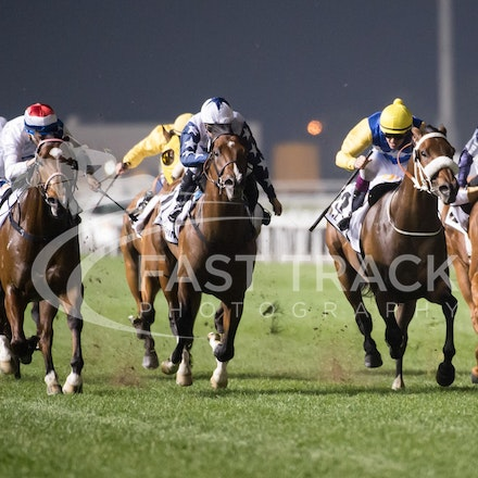 Dubai World Cup 2014 - Race 5, Group 1 Al Quoz Sprint