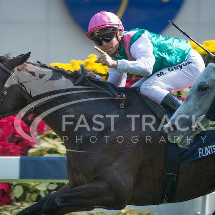 Race 4, Flintshire, M Guyon_14-12-14, Hong Kong Vase_0005