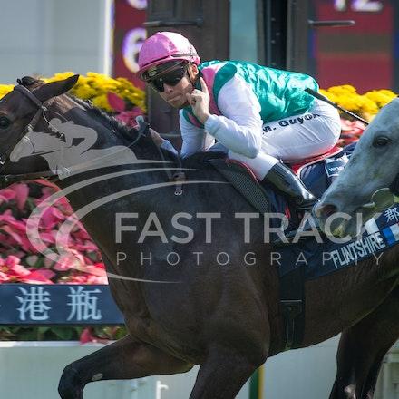 Race 4, Flintshire, M Guyon_14-12-14, Hong Kong Vase_0004