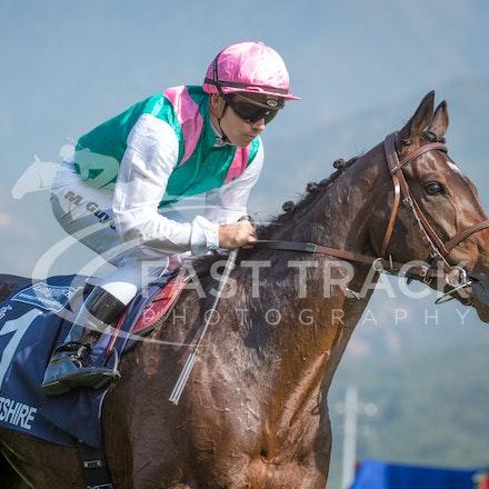 Race 4, Flintshire, M Guyon_14-12-14, Hong Kong Vase_0008