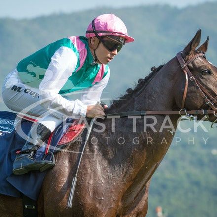 Race 4, Flintshire, M Guyon_14-12-14, Hong Kong Vase_0009