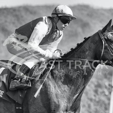 Race 4, Flintshire, M Guyon_14-12-14, Hong Kong Vase_0010