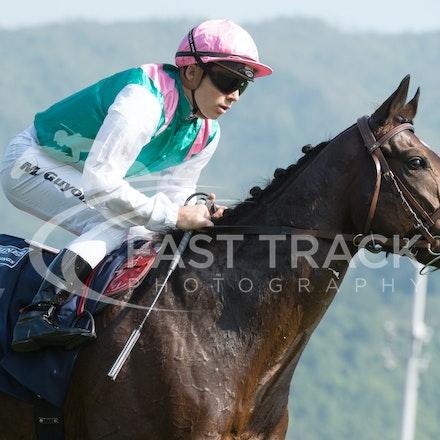 Race 4, Flintshire, M Guyon_14-12-14, Hong Kong Vase_0011