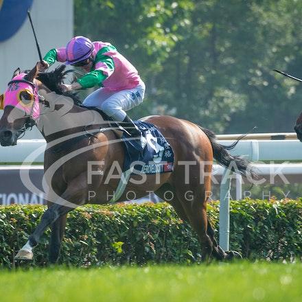 Race 5, Aerovelocity, Zac Purton_14-12-14, Hong Kong Sprint_0017
