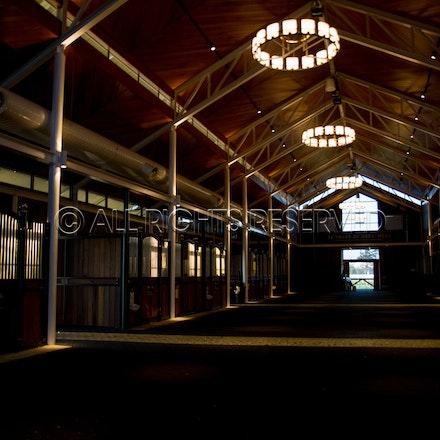 General, Arrowfield Barn_08-04-18, Inglis, Sydney, Sharon Lee Chapman_0242