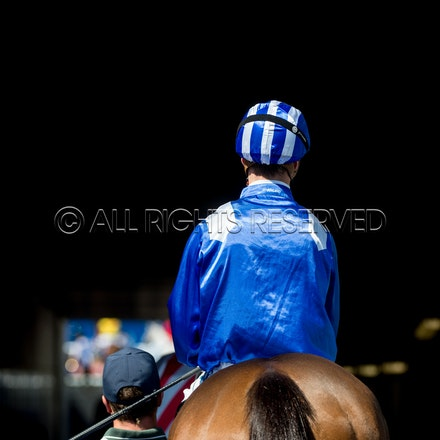 Race 1, Enbihaar, Cory Parish_07-04-18, Royal Randwick, Sharon Lee Chapman_0078