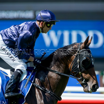 Race 1, Ennis Hill, Stephen Baster_07-04-18, Royal Randwick, Sharon Lee Chapman_0084