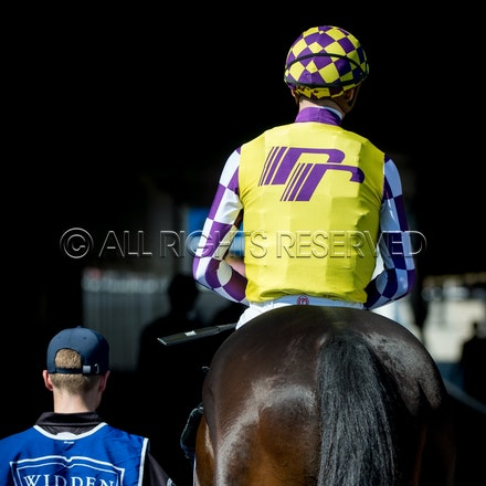 Race 1, Lean Lean Machine, Blake Shinn_07-04-18, Royal Randwick, Sharon Lee Chapman_0066