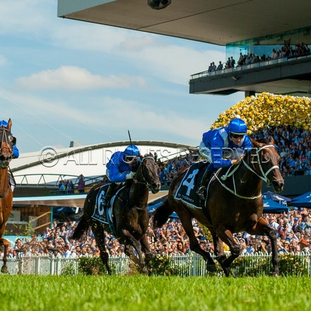 Golden Slipper Day - 24 March 2018