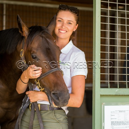 Magic Millions - Day Two - 11 January 2018