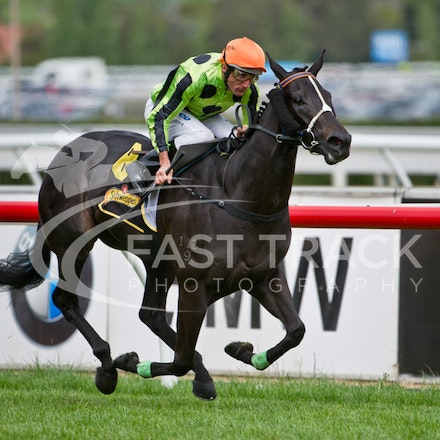Thousand Guineas - 17 October 2012
