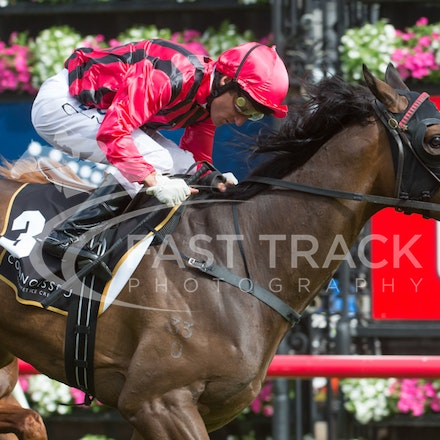 Race 7 - Listed Connoisseur Stakes - Crown Oaks Day - 7 November 2013 - Flemington