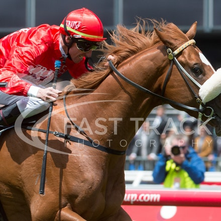 Race 4 - Listed Hilton Hotels and Resorts Stakes - Emirates Stakes Day - 9 November 2013 - Flemington