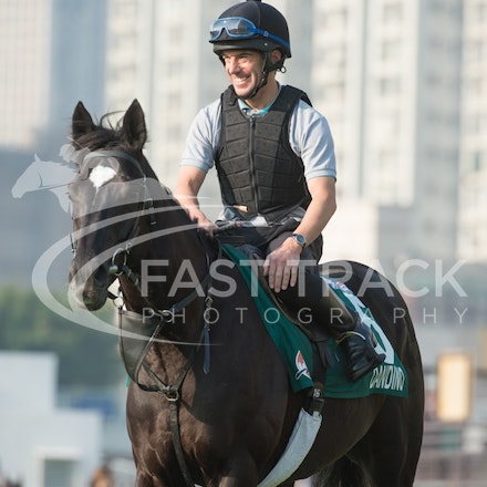Sha Tin Trackwork - Hong Kong