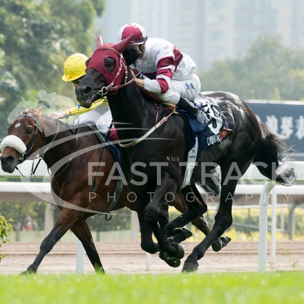 Sha Tin - International Races - 8 December 2013