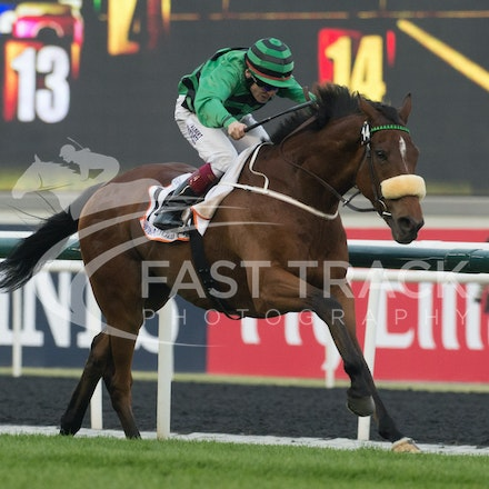 Dubai World Cup 2014 - Race 3, Dubai Gold Cup