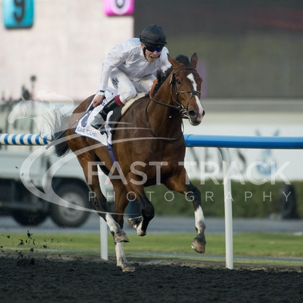 Dubai World Cup 2014 - Race 4 UAE Derby