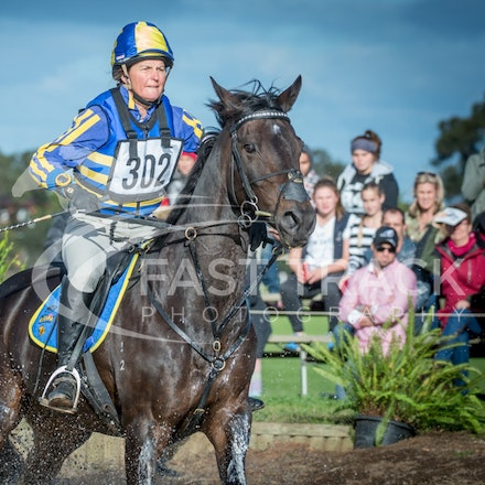 Class 1, 3 Star, 302, Sonja Johnson, Belfast Mojito_09-06-14, MIHT, Werribee, Cross Country_117