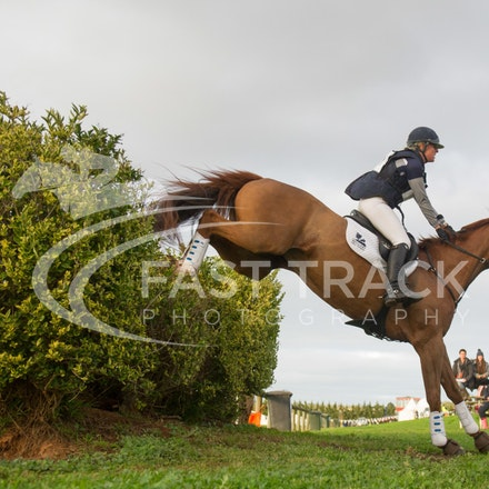 Class 1, 1 Star, 101, Alexandra Townsend, Halycon Days_09-06-14, MIHT, Werribee, Cross Country_179