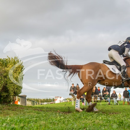 Class 1, 1 Star, 101, Alexandra Townsend, Halycon Days_09-06-14, MIHT, Werribee, Cross Country_180