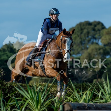 Class 1, 1 Star, Junior, 51, Kelsey Pfeiffer, Sovereign Rose_08-06-14, MIHT, Werribee_001