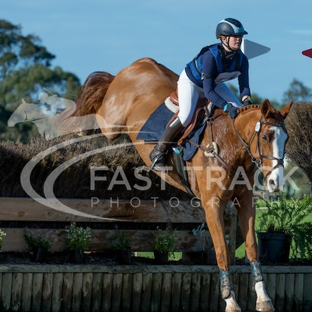 Class 1, 1 Star, Junior, 51, Kelsey Pfeiffer, Sovereign Rose_08-06-14, MIHT, Werribee_007