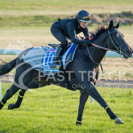 Werribee - International Quarantine Centre - Trackwork