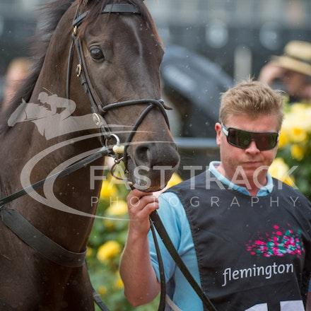 Race 1, Azkadellia_01-11-14, Group 3 Carbine Club Stakes, Flemington_Sharon Chapman_0010