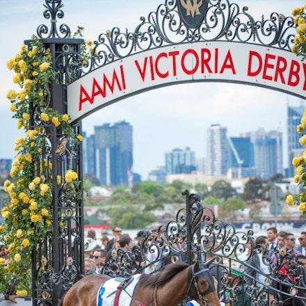 Race 2, Abduction_01-11-14, Group 2 Wakeful Stakes, Flemington_Sharon Chapman_0201