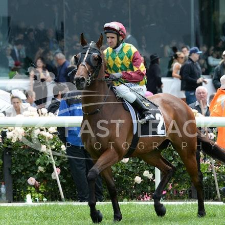 Race 3, Alma's Fury, Michael Rodd_01-11-14, Group 3 Yellowglen Stakes, Flemington_Adam Mooshian_0546