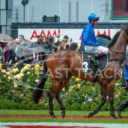 Race 3, Generalife, Kerrin McEvoy_01-11-14, Group 3 Yellowglen Stakes, Flemington_Michael McInally_0611