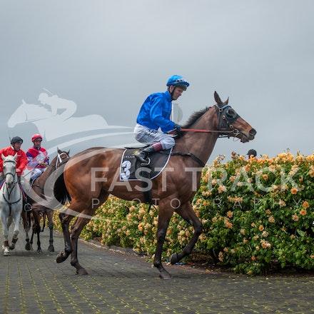 Race 3, Generalife, Kerrin McEvoy_01-11-14, Group 3 Yellowglen Stakes, Flemington_Sharon Chapman_0458