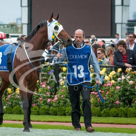 Race 4, Armada_01-11-14, Grp 1 Coolmore Stud Stakes, Flemington_Michael McInally_0805
