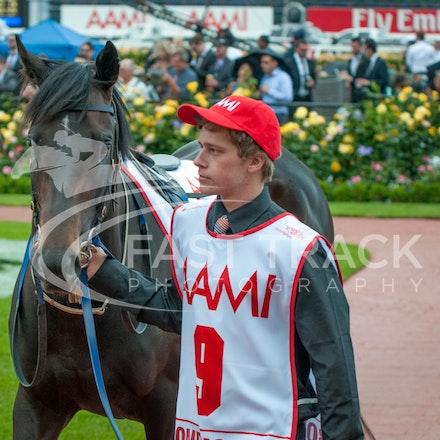 Race 7, Bondeiger_01-11-14, Grp 1 AAMI Victoria Derby, Flemington_Michael McInally_2992